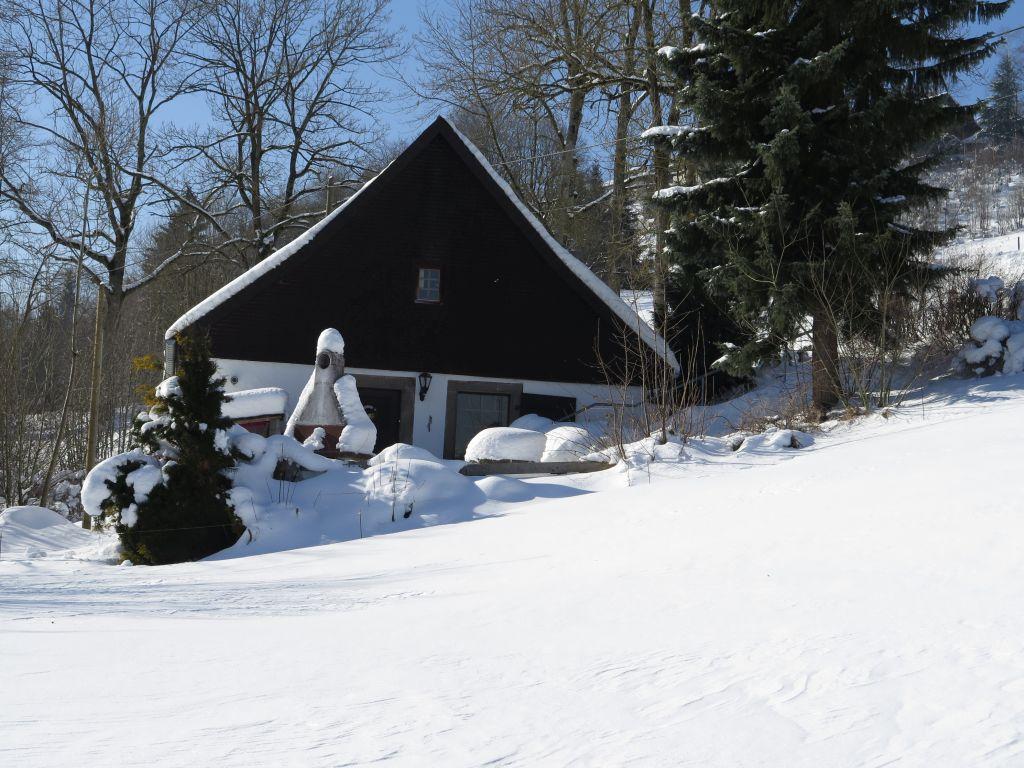 Winterbild_2.jpg
